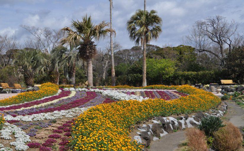 ガーデンではたくさんの花が咲いています